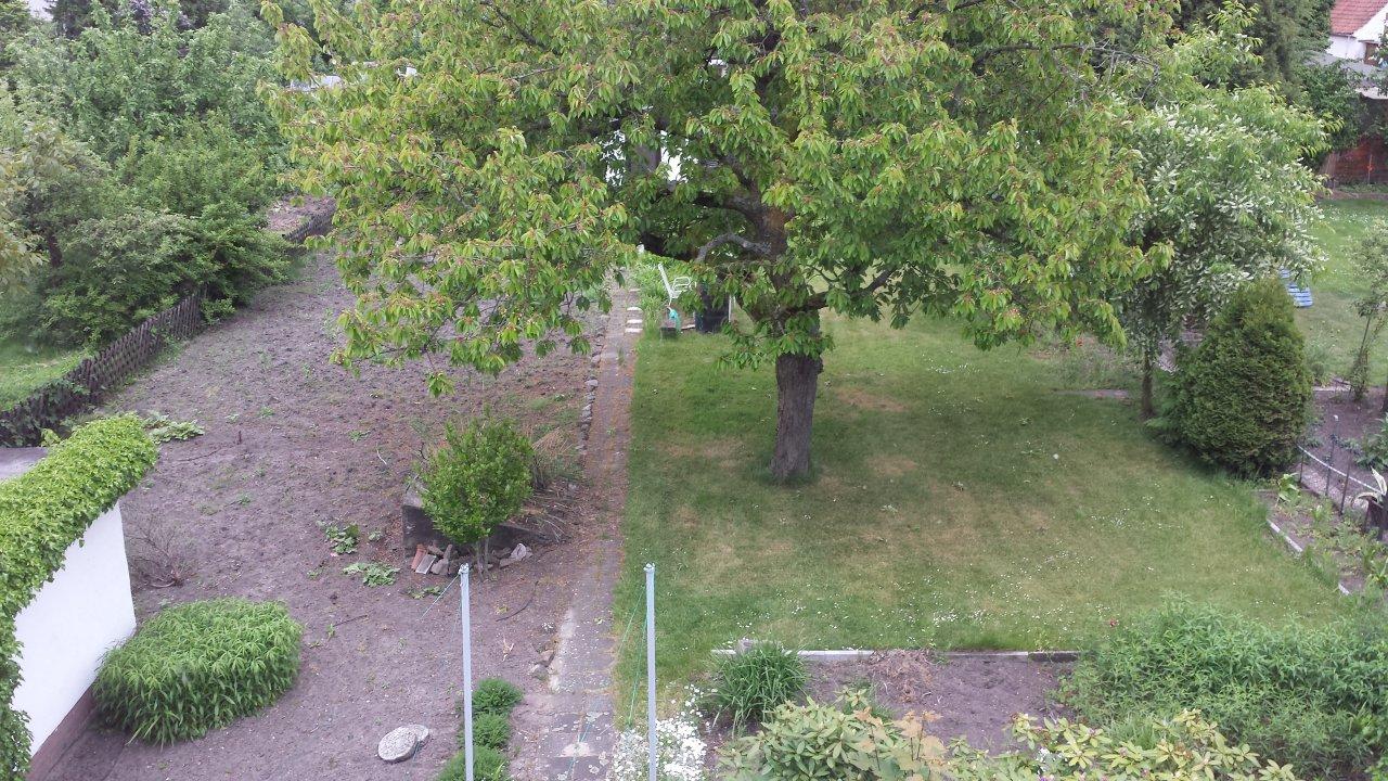 Der Garten - Viel Fläche die schön gemacht werden will